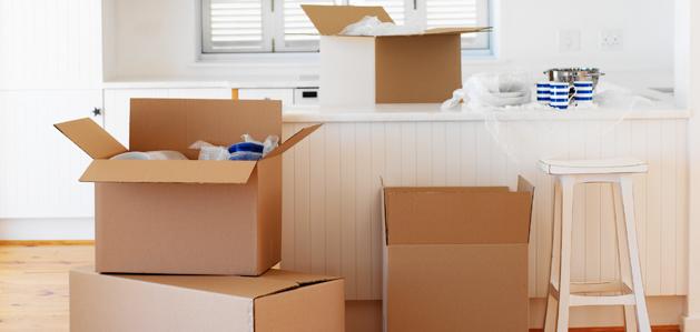 Pakiranje stvari za selibu u adekvatne kutije